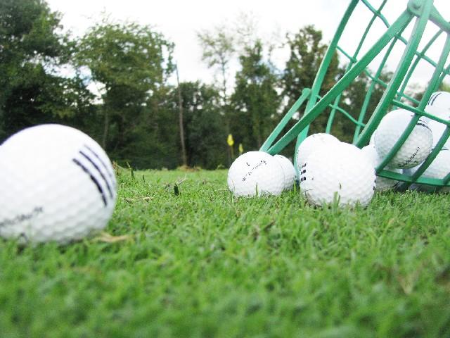 ゴルフダイジェストオンライン