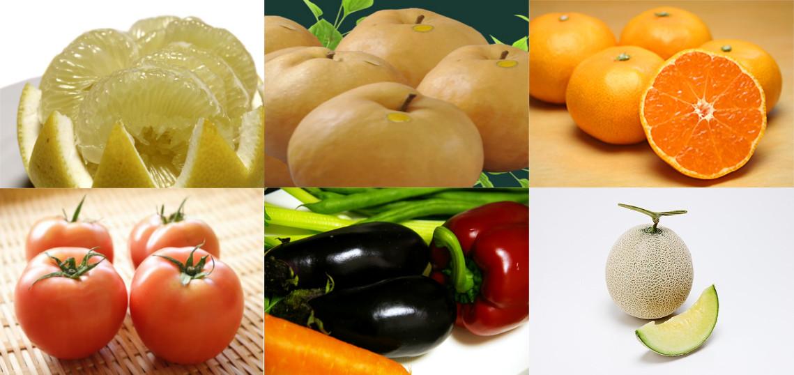 土佐の新鮮野菜・果物をお届け!